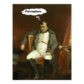 Napoleon Thinks About Porcupines Letterhead