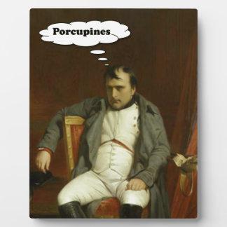 Napoleon Thinks About Porcupines Plaque