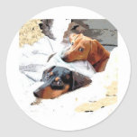 Napping Dogs Round Sticker