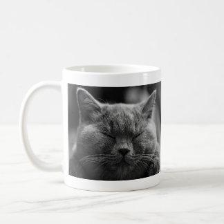 Napping Gray Cat Coffee Mug
