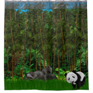 Napping In the Bamboo Grove Shower Curtain
