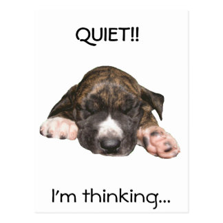 Napping Puppy Postcard