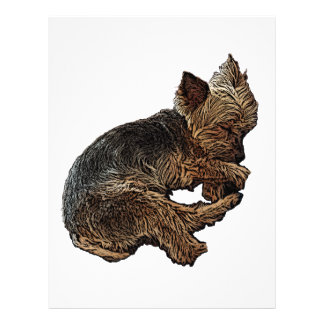 Napping Yorkie Letterhead
