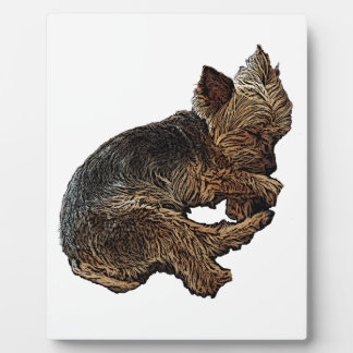 Napping Yorkie Plaque