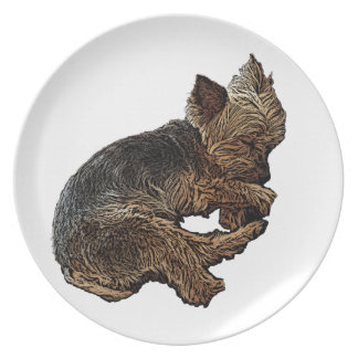 Napping Yorkie Plate