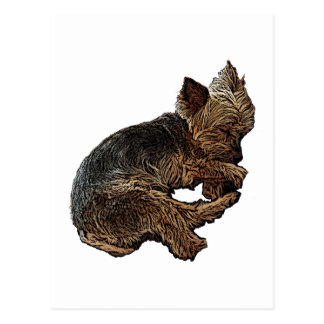 Napping Yorkie Postcard