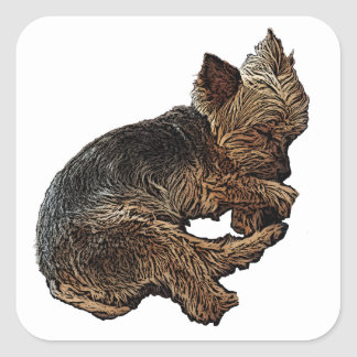 Napping Yorkie Square Sticker