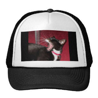 Naptime For Lucy Trucker Hats