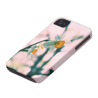 Narcissus Flowers - gentle white and yellow photog iPhone 4 Covers