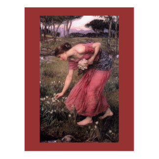 Narcissus Picking Flowers in the Meadow Postcard