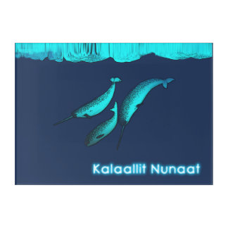 Narwhal Under The Ice - Greenland Acrylic Wall Art