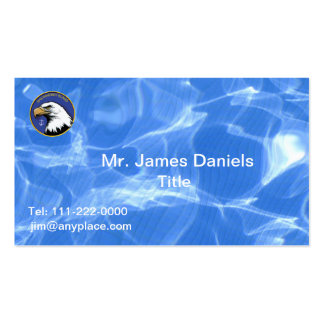 NAS Whidbey Island Double-Sided Standard Business Cards (Pack Of 100)
