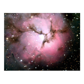 NASA Dusty Pink stars SSC2005 Postcard