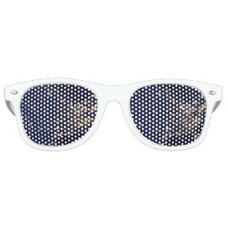 Nasa Lights from Space USA Retro Sunglasses
