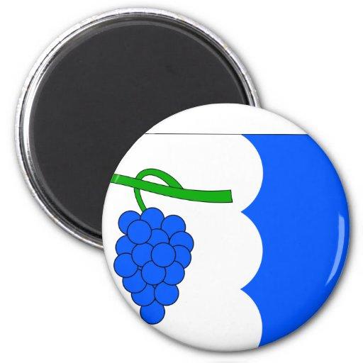 Nasedlovice, Czech Fridge Magnet