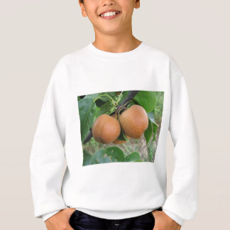 Nashi pears hanging on the tree sweatshirt