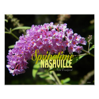 "Nashville Springtime Collection 14"" x 11""-101 Poster"