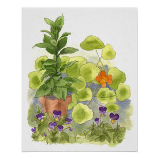 Nasturtium Flower Bay Tree Herbs Watercolor Art Poster