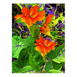 Nasturtiums Garden Gifts by Sharles Art. Postcard