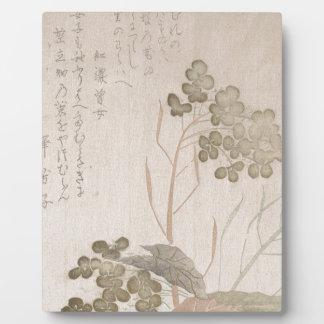 Natane Flower - Japanese Origin - Edo Period Plaque