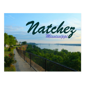 Natchez Mississippi River Bluffs Great Flood 2011 Postcard