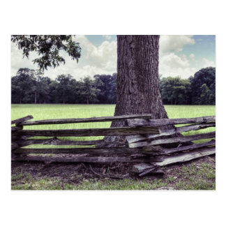 Natchez Split Rail Fence Postcard