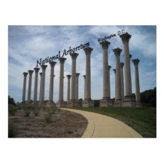 National Arboretum Washington DC Postcard
