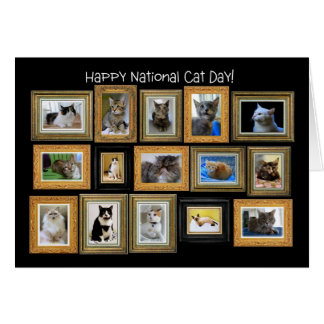 National Cat Day, Cat Portrait Gallery Card