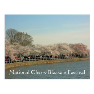 National Cherry Blossom Festival Washington DC 003 Postcard