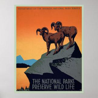 National Park Vintage Poster
