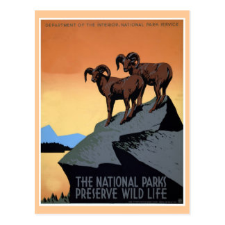 National parks WPA travel poster Postcard