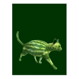 National Watermelon Day Cat Postcard