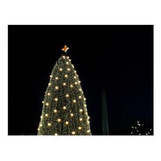 National Xmas Tree & Washington Monument at Night Postcard