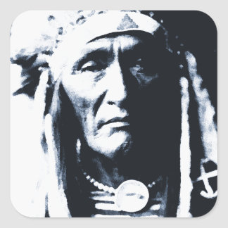Native American Indian Apsaroke Sticker