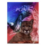 Native American Indian Chief Postcards