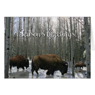 Native American Season's Greetings Buffalo Card