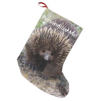 Native Australian Wild Echidna Photo Small Christmas Stocking