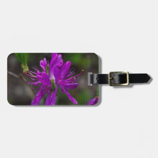 Native Azalea Luggage Tag
