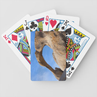 Natural Arch Bicycle Playing Cards