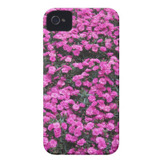 Natural background of purple carnation flowers iPhone 4 cover