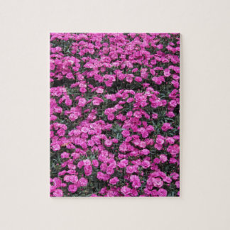 Natural background of purple carnation flowers jigsaw puzzle