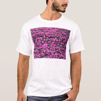 Natural background of purple carnation flowers T-Shirt