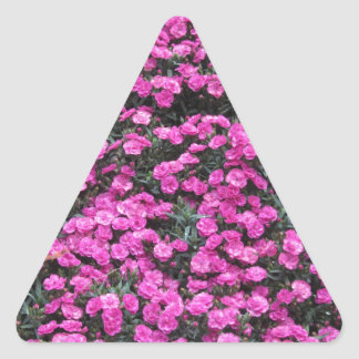 Natural background of purple carnation flowers triangle sticker
