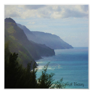 Natural Beauty Kauai Coastline poster