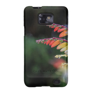 Natural Galaxy SII Cases