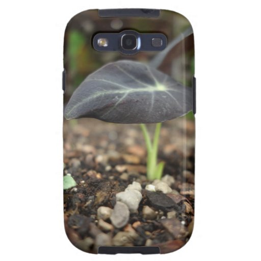 Natural Galaxy SIII Covers
