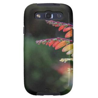 Natural Galaxy S3 Case