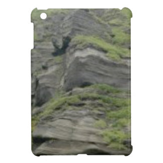 natural folds in stone iPad mini cover