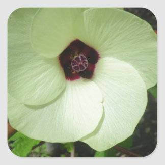 Natural Green Flower Square Sticker