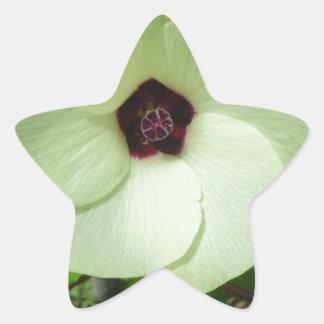 Natural Green Flower Star Sticker